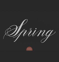 hand drawn lettering spring elegant vector image vector image