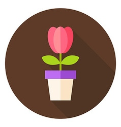 Spring Tulip Flower in the Pot Circle Icon vector image vector image