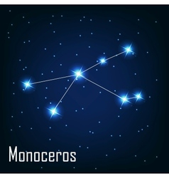The constellation Monoceros star in the night sky vector image