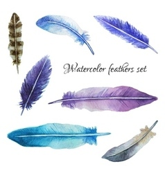 Watercolor feathers set vector