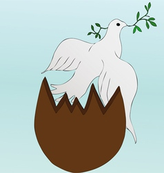 Easter dove vector image vector image