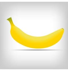 Sweet fresh yellow bananas background vector image
