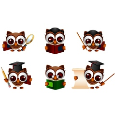 Various of cute owl vector