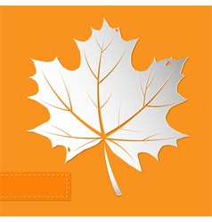 Maple leaf orange background vector