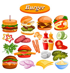different burger ingredient and sauce including vector image