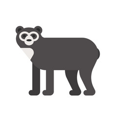 flat style of spectacled bear vector image