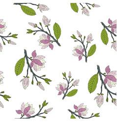 Hand drawm magnolia seamless pattern vector