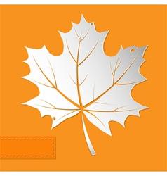 Maple leaf orange background vector