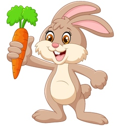 Cartoon happy rabbit holding carrot vector
