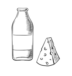 Bottle of milk and piece of cheese sketches vector image