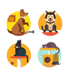 cat and dog flat vector image vector image