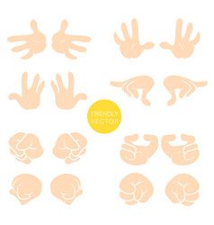 collection of wrist symbols isolated on vector image vector image