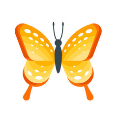 flat style of butterfly vector image