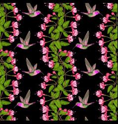 Fuchsia and hummingbird seamless pattern vector