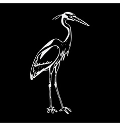 Hand-drawn pencil graphics heron engraving vector