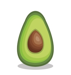 Fresh avocado vegetable isolated icon vector