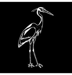 Hand-drawn pencil graphics heron engraving vector