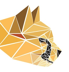 polygonal abstract geometric triangle cheetah low vector image vector image