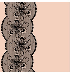 Seamless floral lacy strip vector image
