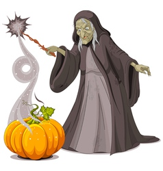 Witch casts a spell over pumpkin vector image