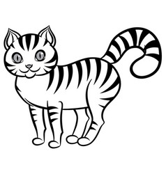 Isolated black and white stripped cat vector