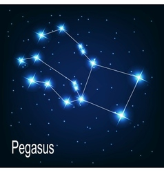 The constellation pegasus star in the night sky vector