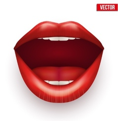Womans mouth with open lips vector