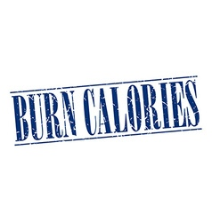 Burn calories blue grunge vintage stamp isolated vector