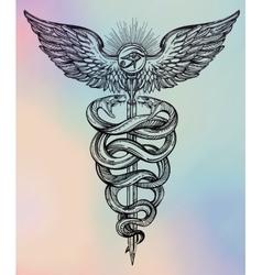 Caduceus symbol of god Mercury vector image vector image