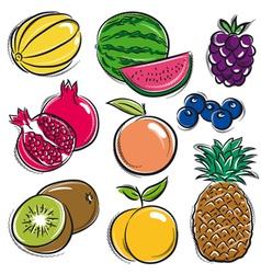 set of fruits melon watermelon blackberry peach vector image