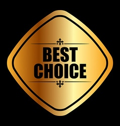 Best choice vector