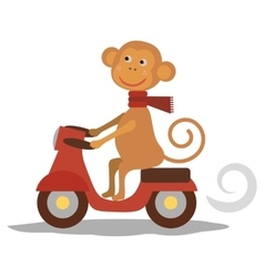 Cute monkey with scarf on transport vecor vector