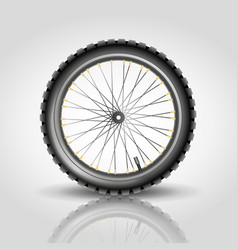 Bike wheel vector image vector image