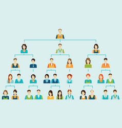 organizational chart corporate business hierarchy vector image