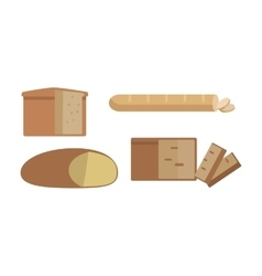 Set of different types of bread vector