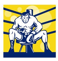 boxer sitting on corner vector image