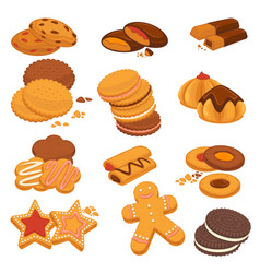 Chocolate cookies and gingerbread biscuits vector