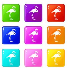 Flamingo icons 9 set vector