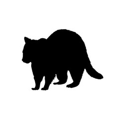 Raccoon silhouette black white icon vector