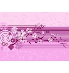 Spring sakura blossom background vector