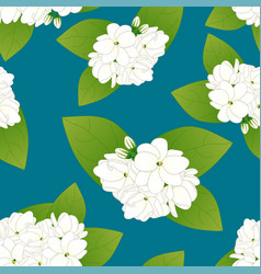 arabian jasmine on indigo blue background vector image