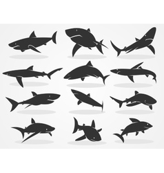 Silhouette shark set vector image