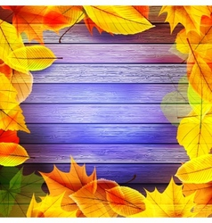 Yellow wet autumn leaves on the background EPS10 vector image vector image