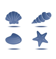 Seashells symbols vector