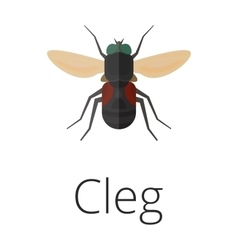 Cleg skin parasite insect bug vector