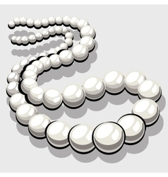 Beads from white pearls womens elegant jewelry vector