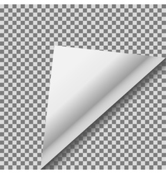Folded up white foil blank note paper vector image vector image