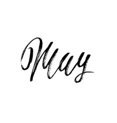 hand drawn typography lettering may month vector image