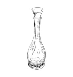 sketch of jug vector image vector image