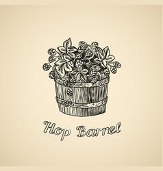 barrel of hop vector image